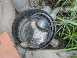 grease trap wikipedia