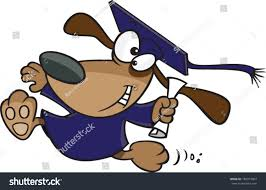 dog graduation cap and gown dog wearing graduation cap gown stock vector 180977864