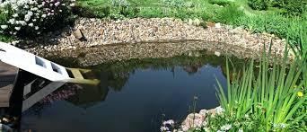 backyard pond images u2013 mobiledave me