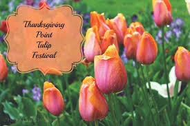 thanksgiving point tulip festival home crafts by ali