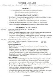 Resume Summary Statement Examples by Resume Summary Statement Examples U2013 Resume Examples