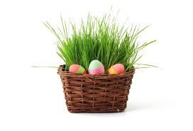 easter egg basket easter egg basket free stock photo by pixabay on stockvault net