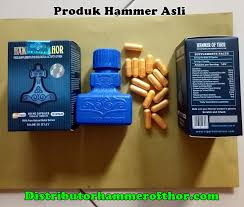 hammer of thor distributor resmi hammer of thor