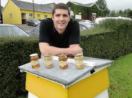 Seeking Honey Song Quince Honey Farm Is Seeking To Move Barnstaple Bideford And
