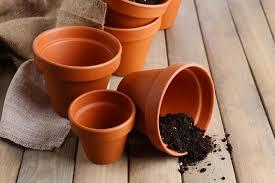 foto vasi come pulire i vasi di terracotta soluzioni di casa
