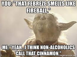 Febreze Meme - you that febreze smells like fireball me yeah i think non