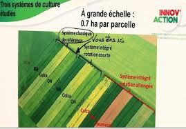 chambre d agriculture lorraine ac agriculture de conservation page 5 scoop it