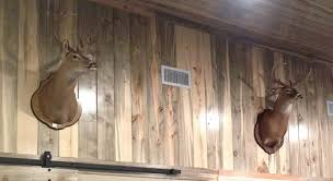 stained wood panels blue stain pine paneling buffalo lumber