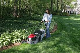 the best lawn mower the sweethome