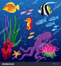 vector set sea animals seaweeds stock vector 132072995 shutterstock