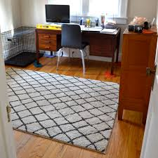 flooring appealing interior rugs design with cozy rugs direct