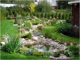 ornamental plants for landscape design buy in taling chan