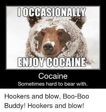 Coke Bear Meme - 25 best memes about cocaine is a helluva drug cocaine is a