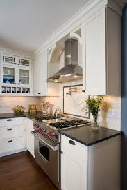Range Hood Ideas Kitchen Range Hood Ideas Kitchen Traditional With Bin Pulls Chimney Hood