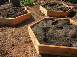 advantages and disadvantages of raised bed vegetable gardening