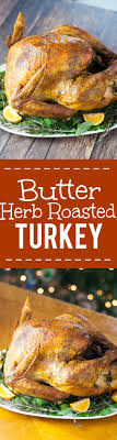 butter herb roasted turkey recipe thanksgiving turkey