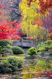 images of beautiful gardens new 95 best beautiful gardens images