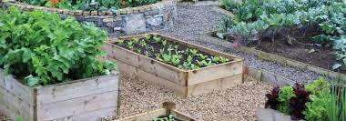 How To Make A Raised Bed Vegetable Garden - how to use raised beds for vegetable gardening