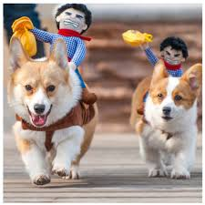 Funny Halloween Animal Costumes Buy Wholesale Riding Animal Costumes China Riding