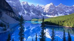 mountains icy tree blue snow water lake forest mountain mountains