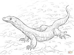 sand goanna coloring page free printable coloring pages