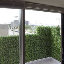 discover balcony rail hedges for privacy home infatuation blog
