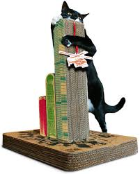 50 presents for pered pets