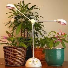 indoor plant grow lights plant lights home depot the best plant