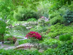 creation of flower beds in your garden