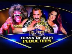 congratulations to amy dumas 2014 wwe hall of fame inductee