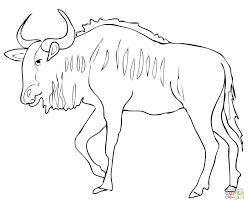 gnu antelope blue wildebeest coloring page free printable