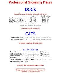 Dog Grooming Styles Haircuts Pamper4paws Dog Grooming Salon Westchester Ny Dog Groomer Cat
