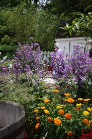 170 best colonial williamsburg gardens images on pinterest