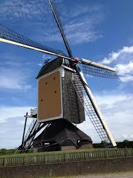national windmill day dutch language blog