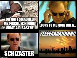 Horatio Caine Meme - a csi miami meme i came up with while attending a lecture on fossil