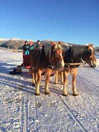 Price Of Rides At Winter Dinner Sleigh Rides At Haymaker Steamboat Springs Menu Prices