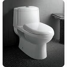 Costco Bidet Awesome Dual Flush Toilets Ideas U2014 Wedgelog Design