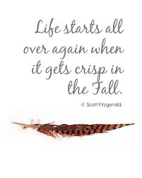 quotes about fall in florida 100 quotes about fall funny 100 funny and inspirational