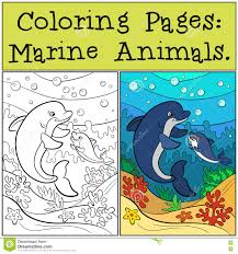 coloring pages marine animals mother dolphin swims stock vector