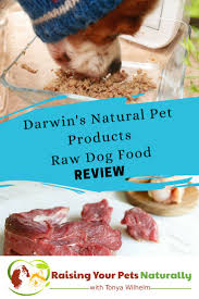 294 best raw feeding images on pinterest raw dog food homemade
