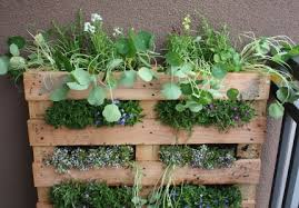 how to make your own vertical pallet garden in three easy steps