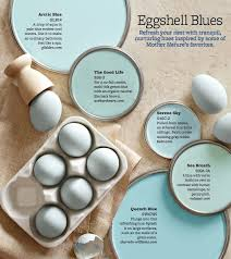 best 25 robin egg blue ideas on pinterest robins egg paint