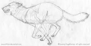 wolf running sketch by khiton on deviantart