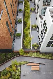Stream Belmont Apartments Seattle by 20 Best Small Amenity Courtyards Images On Pinterest Courtyards