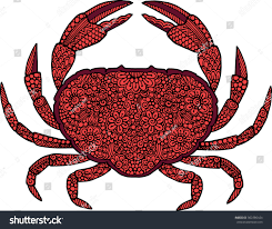 ornamental crab illustration decorated stock vector