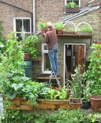 garten balkon balkon gemüse garten dachterrasse haus garten gardens