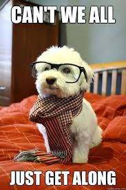 Can T We All Just Get Along Meme - can t we all just get along hipster dog quickmeme