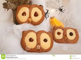 owl cookies stock photo image 44866615