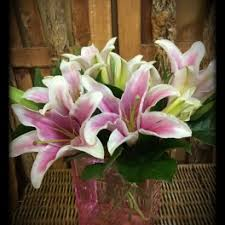 flower delivery minneapolis sympathy and funeral flower delivery in minneapolis paeonia floral