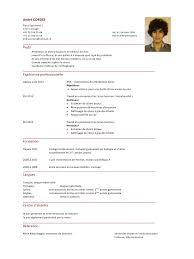 protocole nettoyage bureau modele cv nettoyage locaux cv anonyme